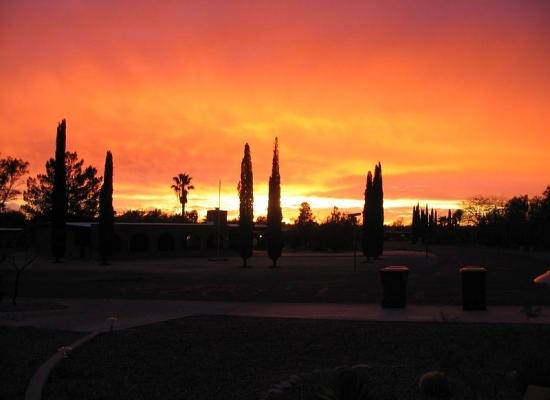 Arizona IM 06